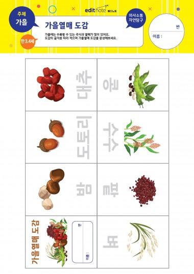 [만3,4세] 가을열매 도감 (가을)