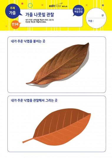 [만5세] 가을 나뭇잎 관찰 (가을)